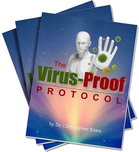 The Virus Proof Protocol e-cover